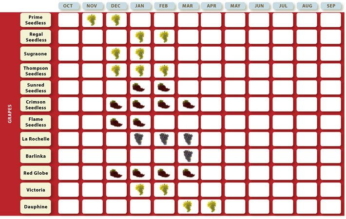 fruit_calendar_02